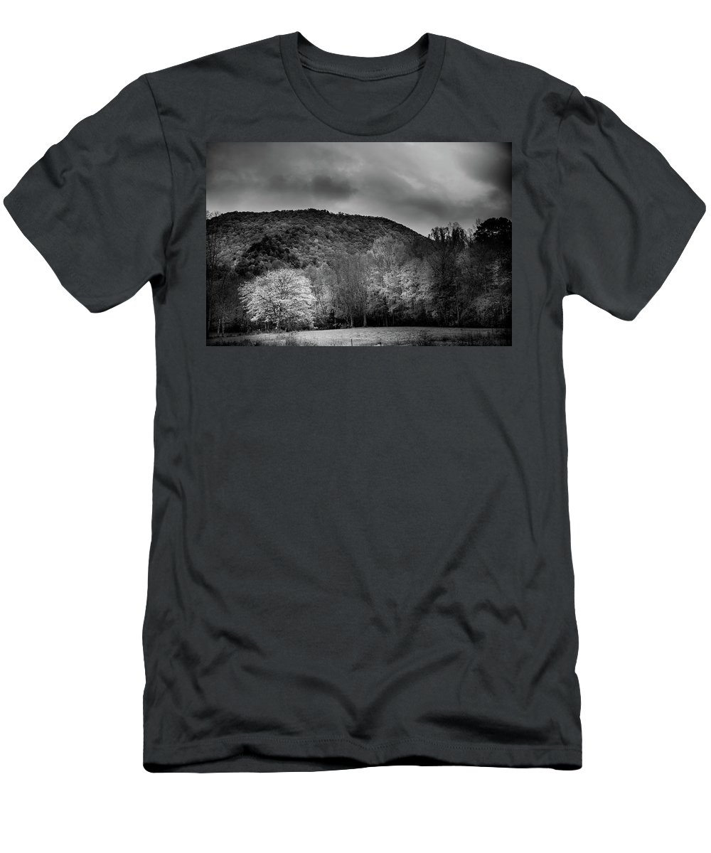 Cherokee County Men's T-Shirt (Athletic Fit) featuring the photograph The Yellow Tree In Black And White by Greg Mimbs