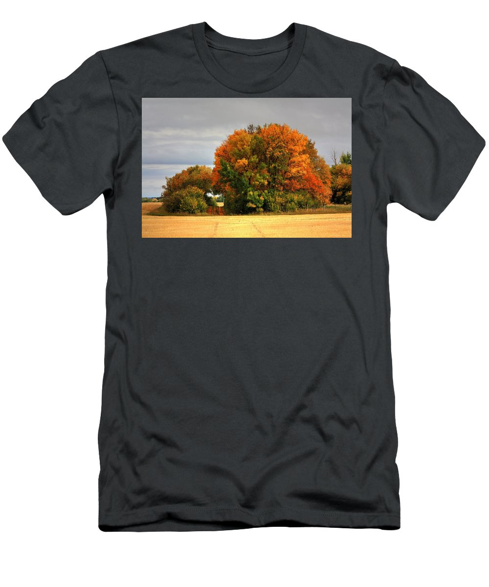 Autumn Fall Colours Colors Winter Red Yellow Red Orange Blue Harvest Evening The End Over This Before Winter Awakening Fall Colours Fall Color Summers End Pumpkins Halloween Leaves Gourds Men's T-Shirt (Athletic Fit) featuring the photograph Turning by David Matthews
