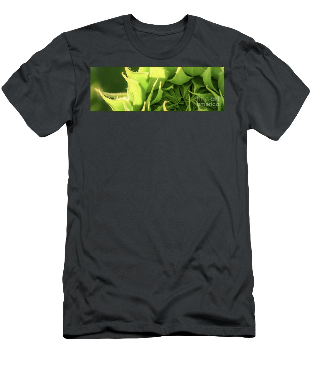 Sunflower Men's T-Shirt (Athletic Fit) featuring the photograph Waiting To Bloom by Martina Schneeberg-Chrisien