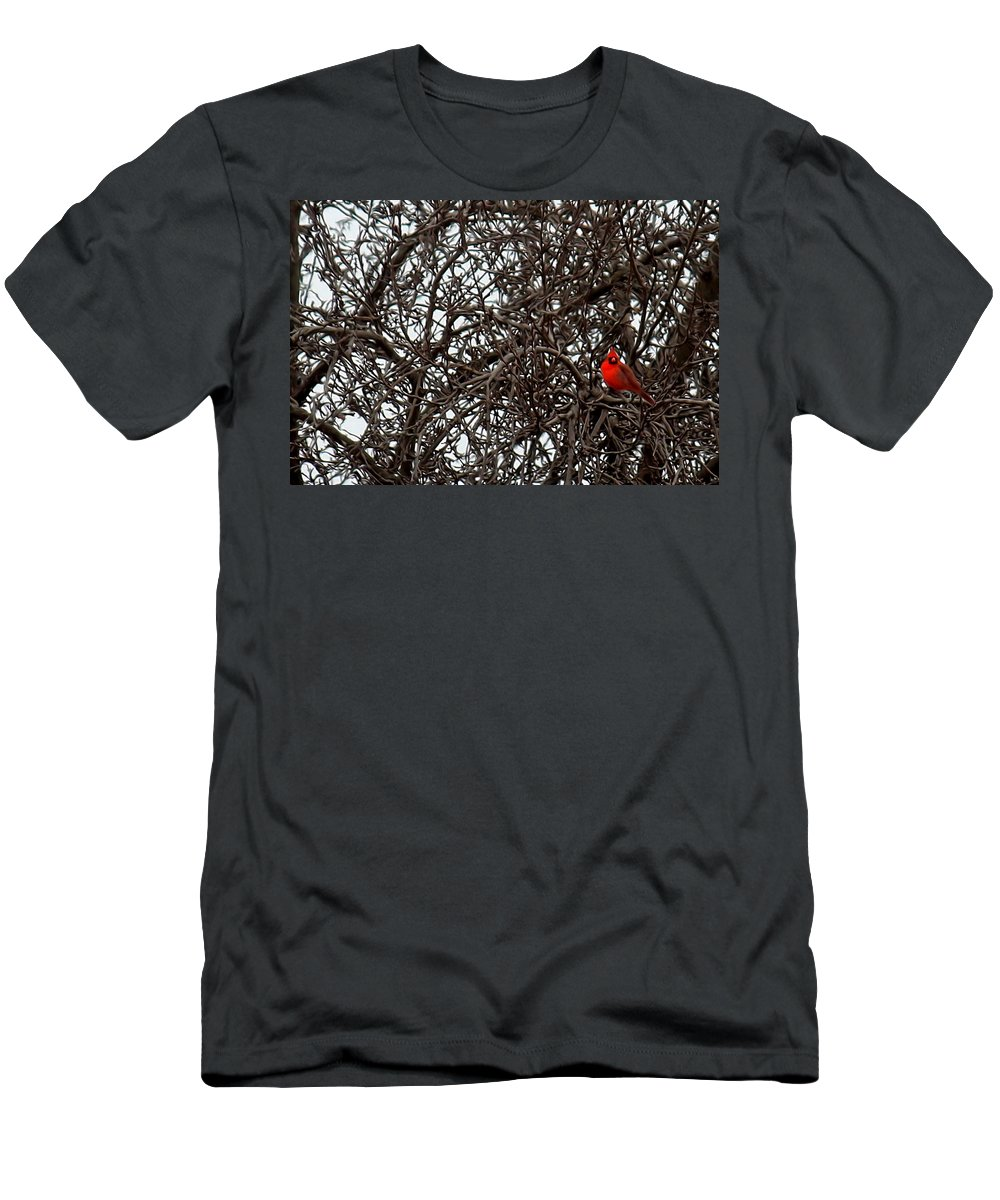Winter Men's T-Shirt (Athletic Fit) featuring the digital art Winter Cardinal by Cheryl Fulton