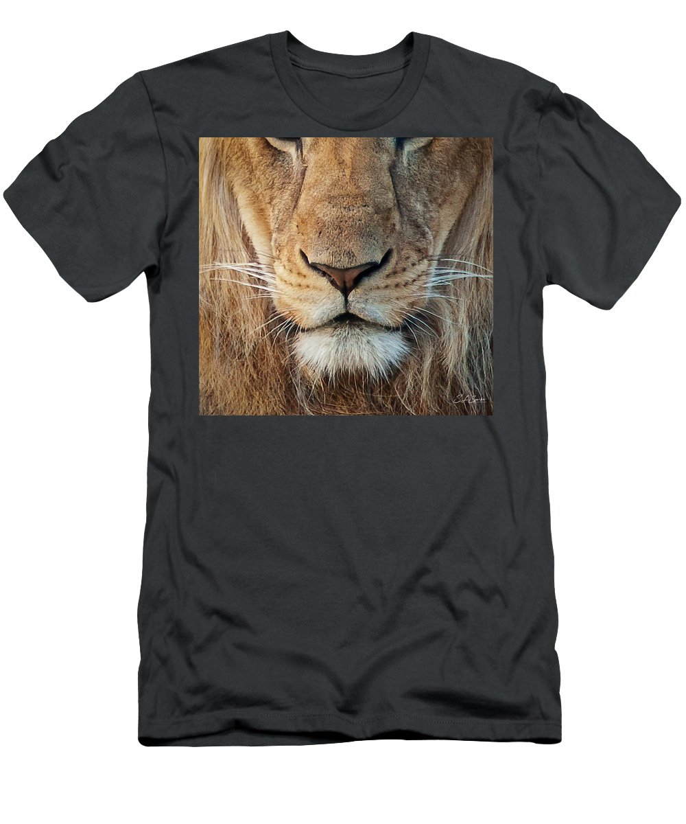 Lion T-Shirt featuring the photograph Lion by Steven Sparks