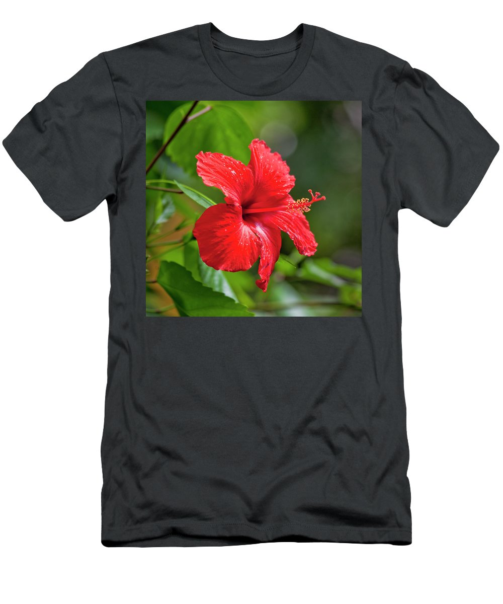 Hibiscus T-Shirt featuring the photograph Red Hibiscus Rosemallow by Trevor Slauenwhite