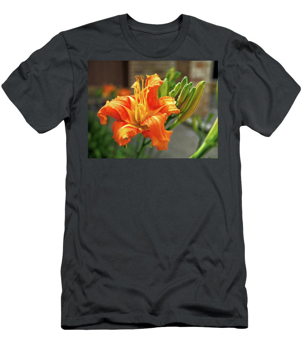 Orange T-Shirt featuring the photograph Spring Flower 14 by C Winslow Shafer