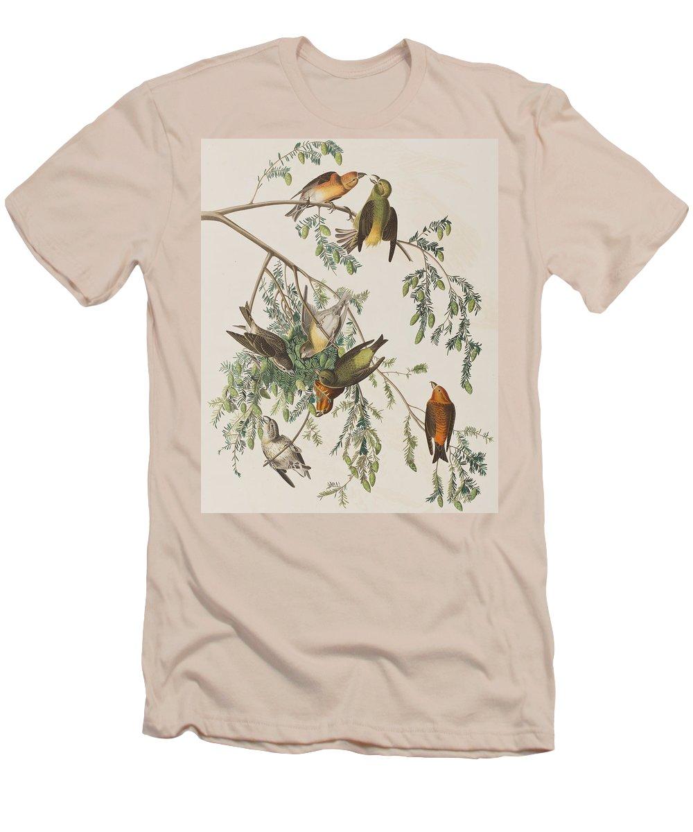 Crossbill Slim Fit T-Shirts