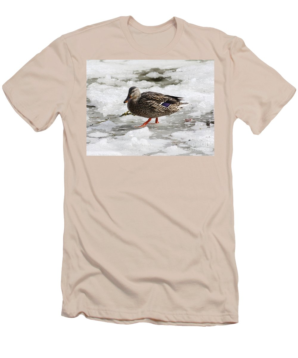 Duck Men's T-Shirt (Athletic Fit) featuring the photograph Duck Walking On Thin Ice by Carol Groenen