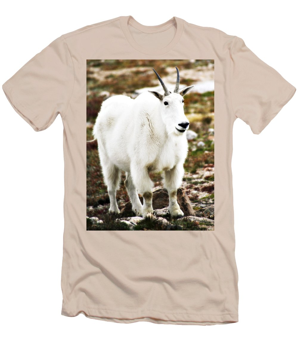 Animal Men's T-Shirt (Athletic Fit) featuring the photograph Mountain Goat by Marilyn Hunt