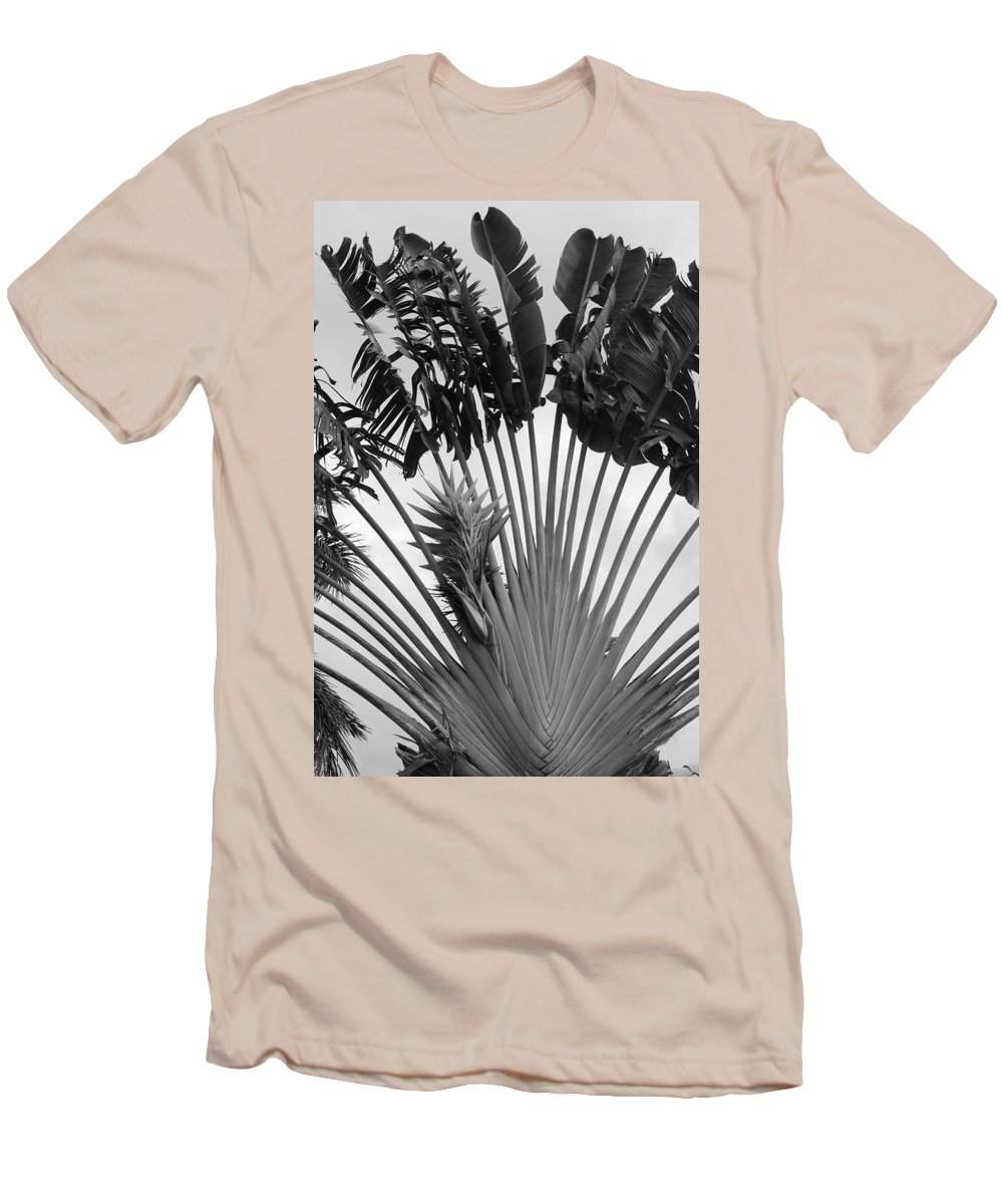 Macro Men's T-Shirt (Athletic Fit) featuring the photograph Palm Frons by Rob Hans