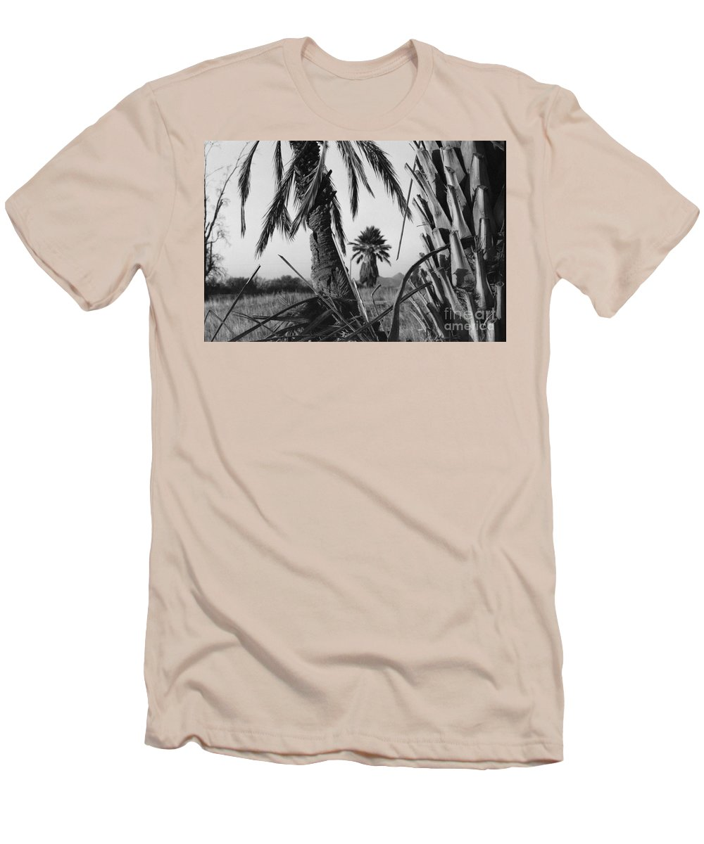 Black And White Photograpy Men's T-Shirt (Athletic Fit) featuring the photograph Palm In View Bw Horizontal by Heather Kirk
