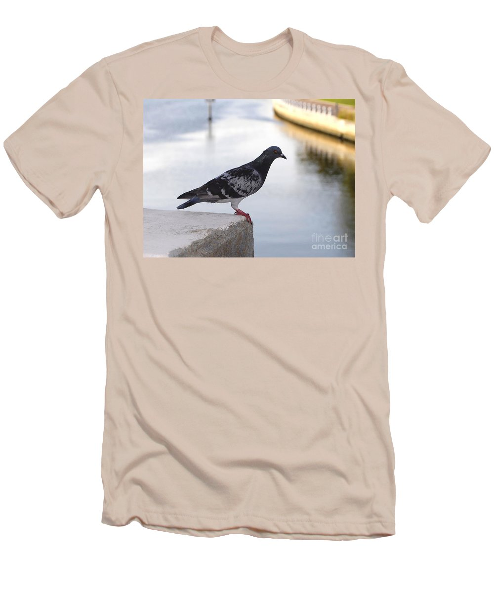 Pigeon Men's T-Shirt (Athletic Fit) featuring the photograph Pigeon By The River by David Lee Thompson