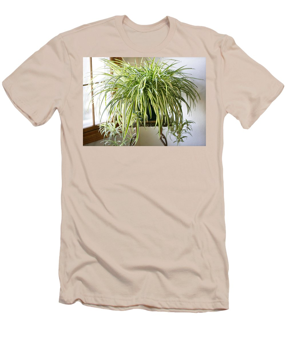 Spider Plant Men's T-Shirt (Athletic Fit) featuring the photograph Spider Plant by Marilyn Hunt