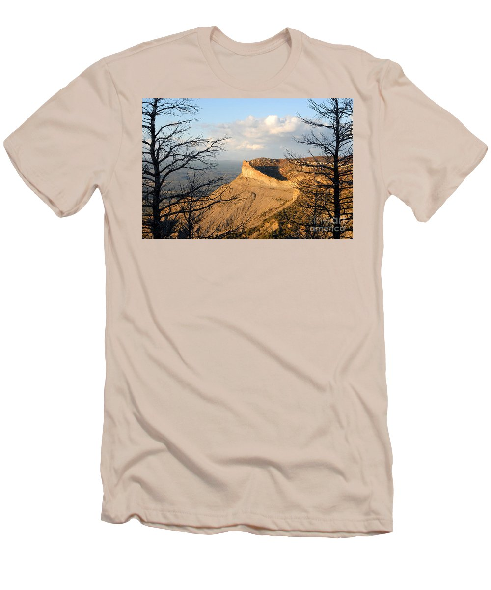 Mesa Men's T-Shirt (Athletic Fit) featuring the photograph The Great Mesa by David Lee Thompson