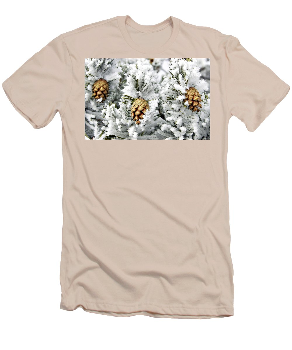 Frosty Men's T-Shirt (Athletic Fit) featuring the photograph Three Pinecones by Marilyn Hunt