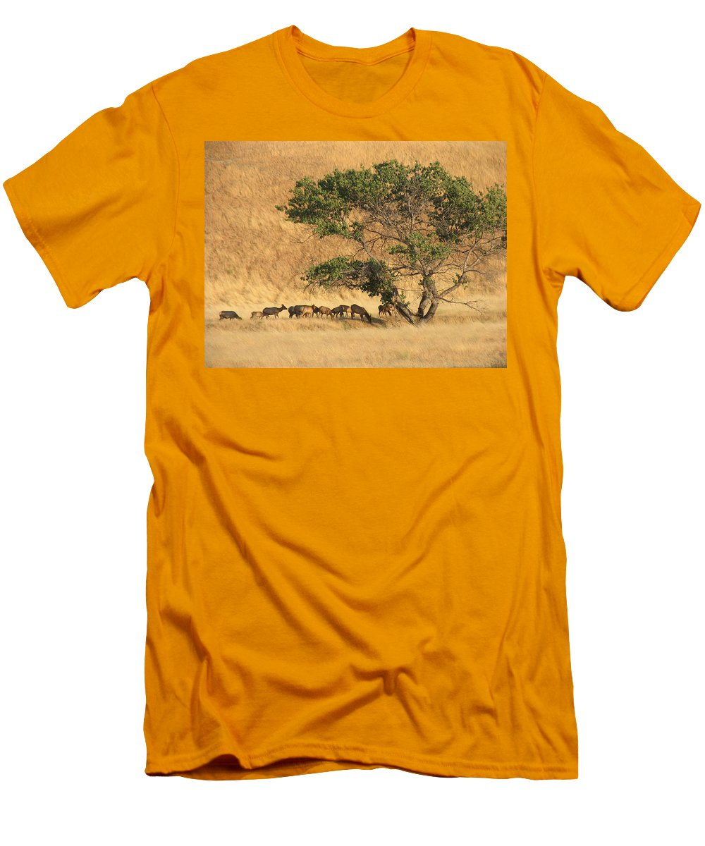 Landscapes Men's T-Shirt (Athletic Fit) featuring the photograph Elk Under Tree by Karen W Meyer