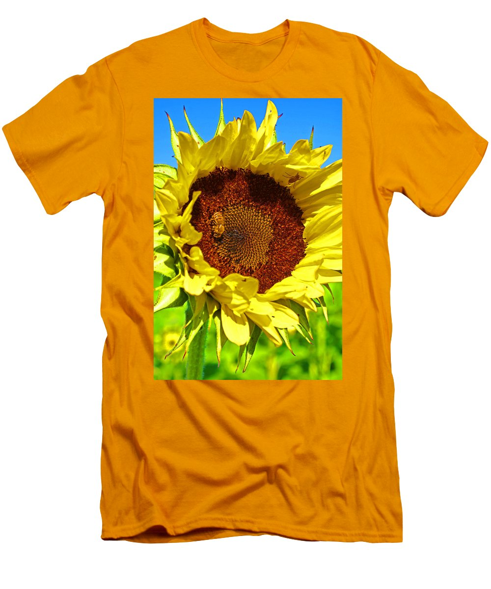 Pastoral Men's T-Shirt (Athletic Fit) featuring the photograph Sunflower And Bee by Heather Coen