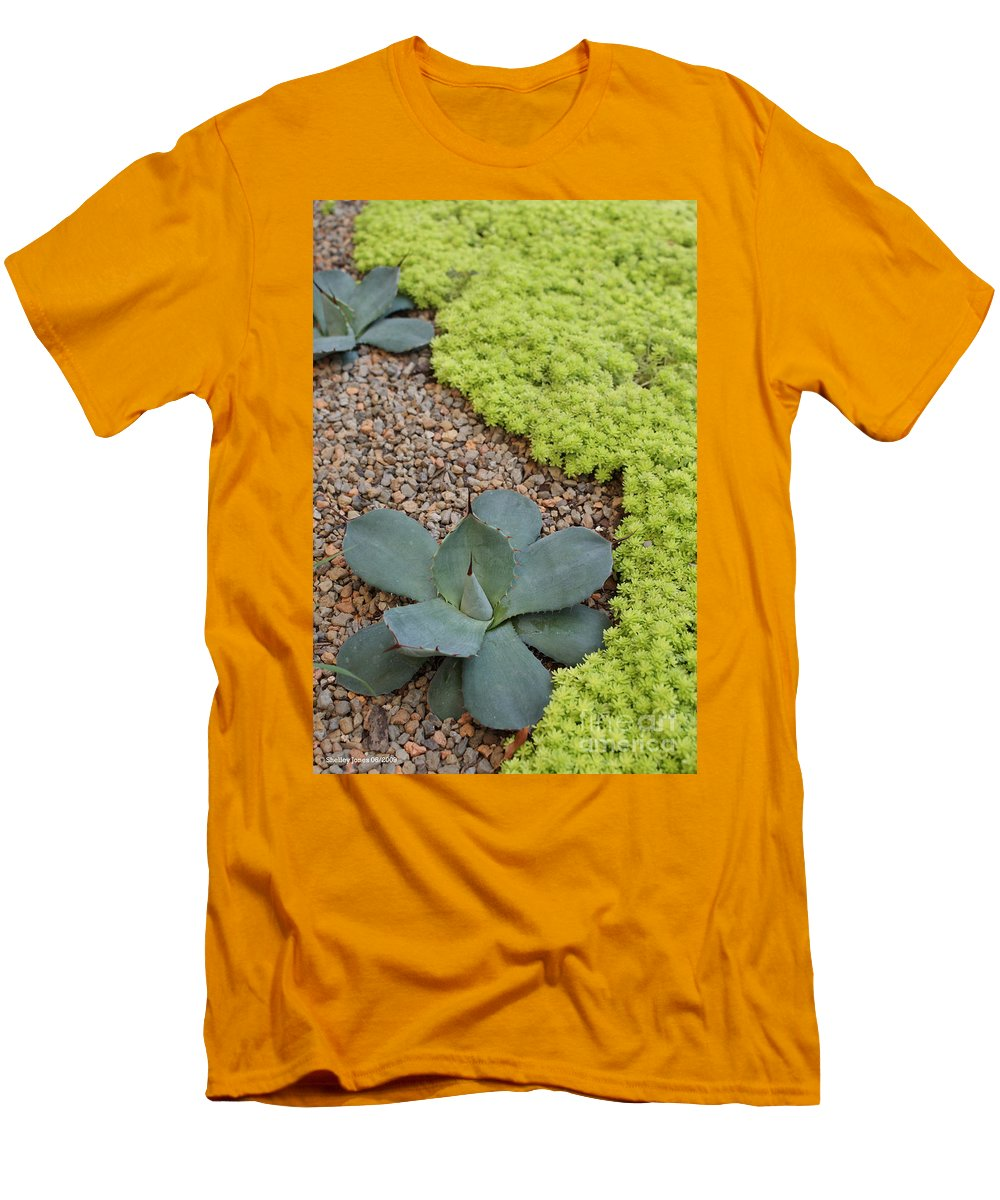 Cacti Men's T-Shirt (Athletic Fit) featuring the photograph Texture by Shelley Jones