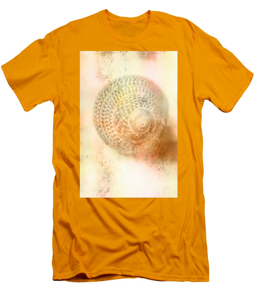Top Down View Of Spiral Sea Shell T-Shirt for Sale by Jorgo ...