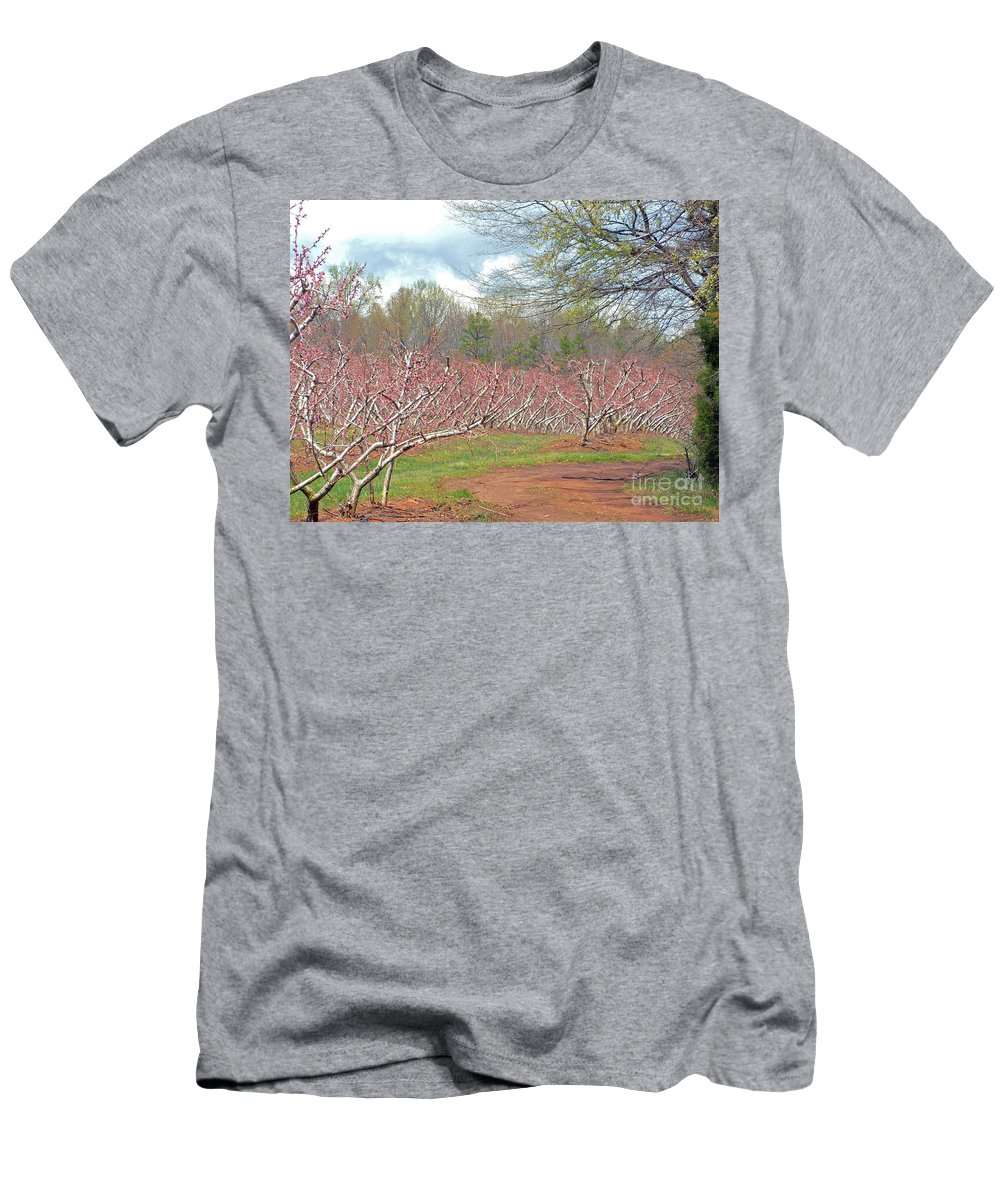 Peach Orchard Men's T-Shirt (Athletic Fit) featuring the photograph A Peach Orchard  by Lydia Holly
