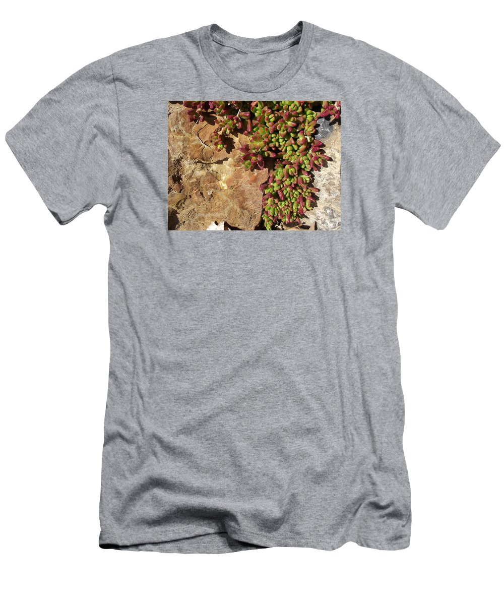 Purple Tinged Leaves Men's T-Shirt (Athletic Fit) featuring the photograph Ice Plant by Mike and Sharon Mathews