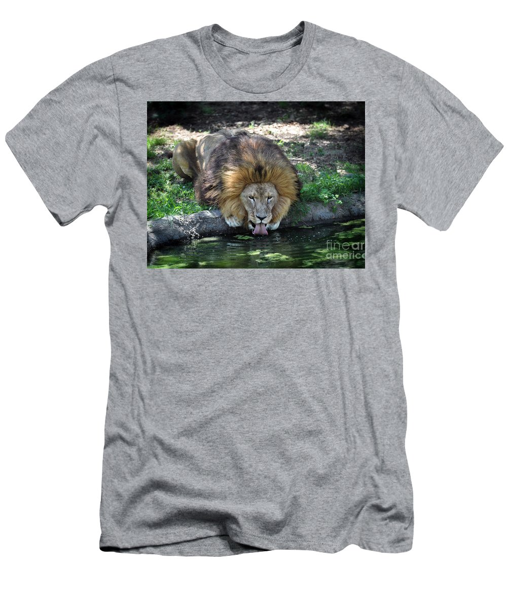 Large Men's T-Shirt (Athletic Fit) featuring the photograph Lion Drinking Water by Savannah Gibbs