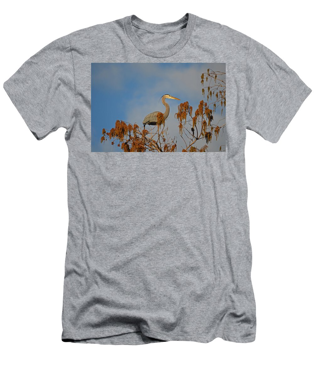 Great Blue Heron Men's T-Shirt (Athletic Fit) featuring the photograph 7- Great Blue Heron by Joseph Keane