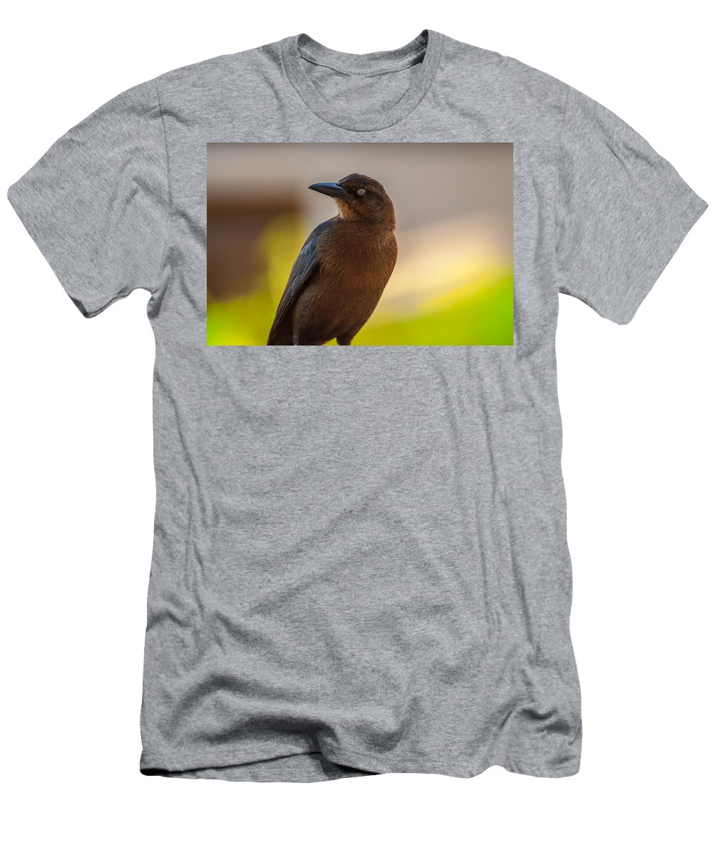 Animal Men's T-Shirt (Athletic Fit) featuring the photograph Bird by Amel Dizdarevic