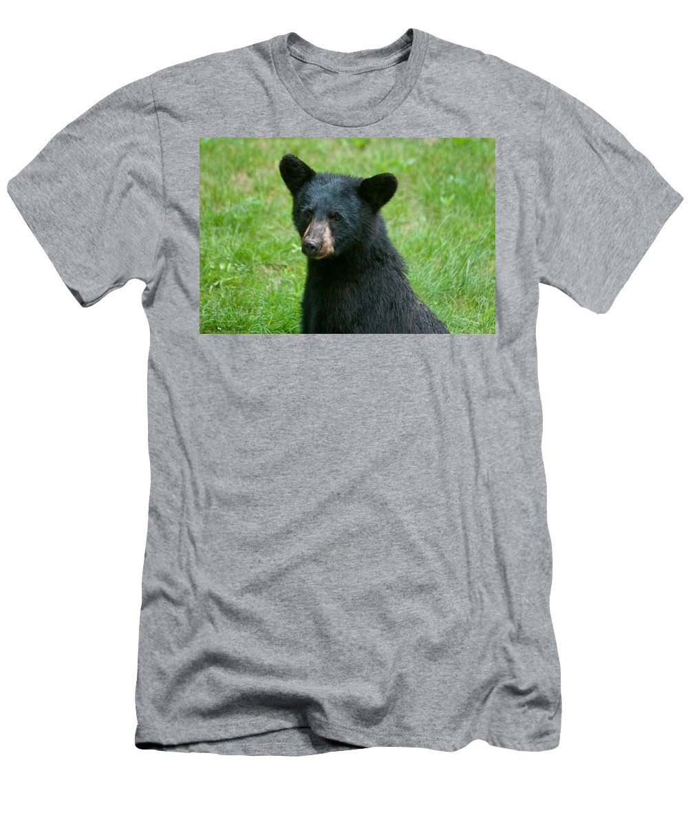 Black Bears Men's T-Shirt (Athletic Fit) featuring the photograph Black Bear Cub by Brenda Jacobs