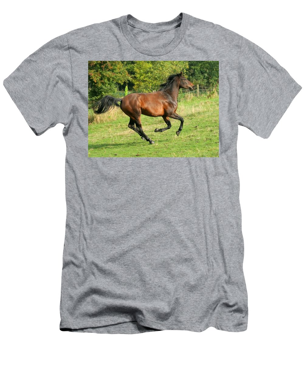 Horse Men's T-Shirt (Athletic Fit) featuring the photograph Gallop by Angel Ciesniarska