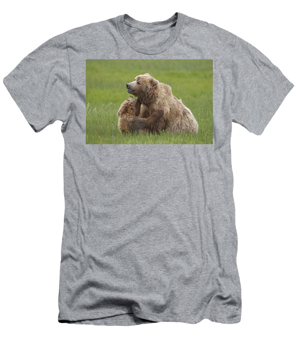 Feb0514 Men's T-Shirt (Athletic Fit) featuring the photograph Grizzly Bear Playing With Cub Lake by Ingo Arndt