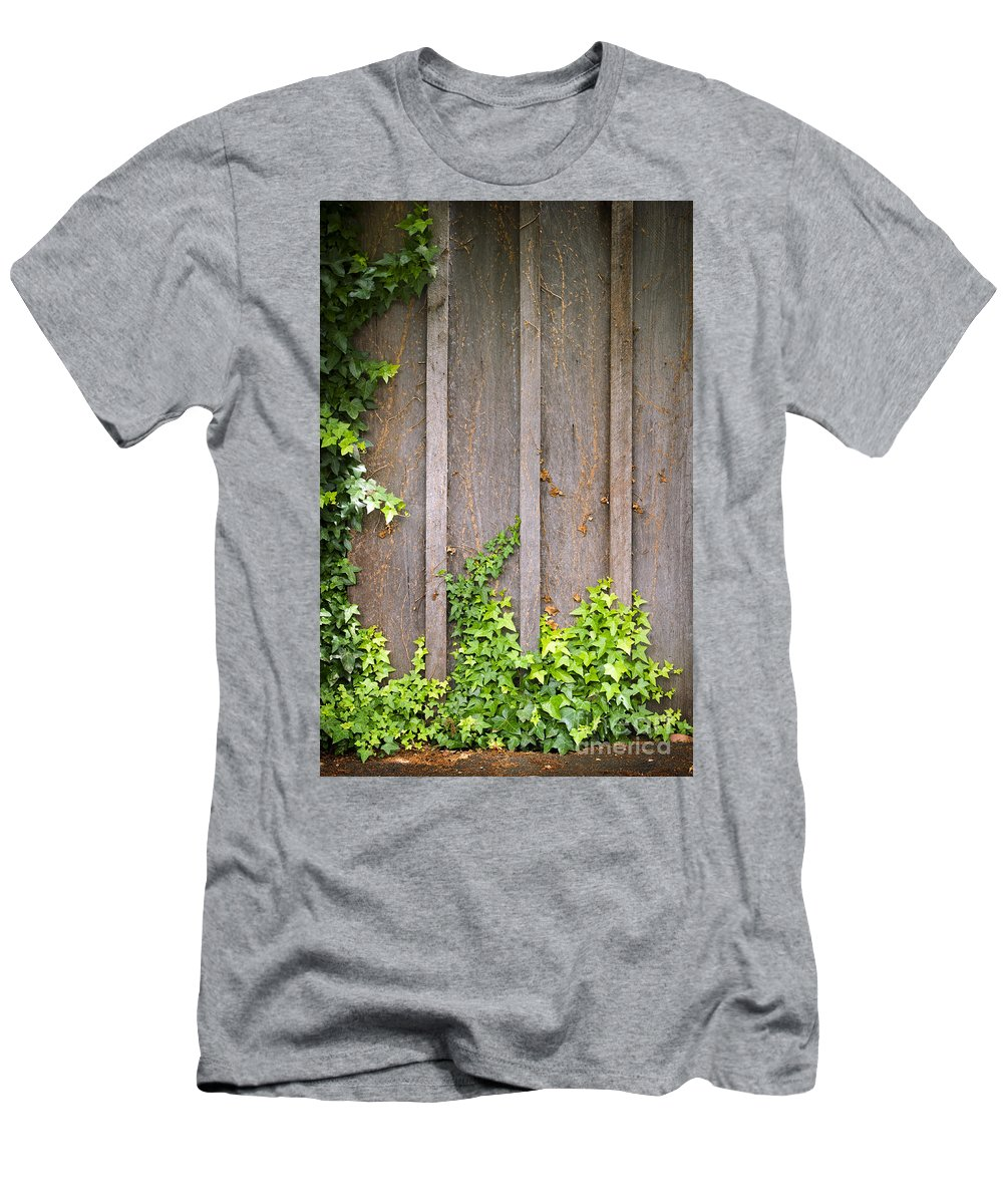 Scenics Men's T-Shirt (Athletic Fit) featuring the photograph Ivy Wall Frame by Tim Hester