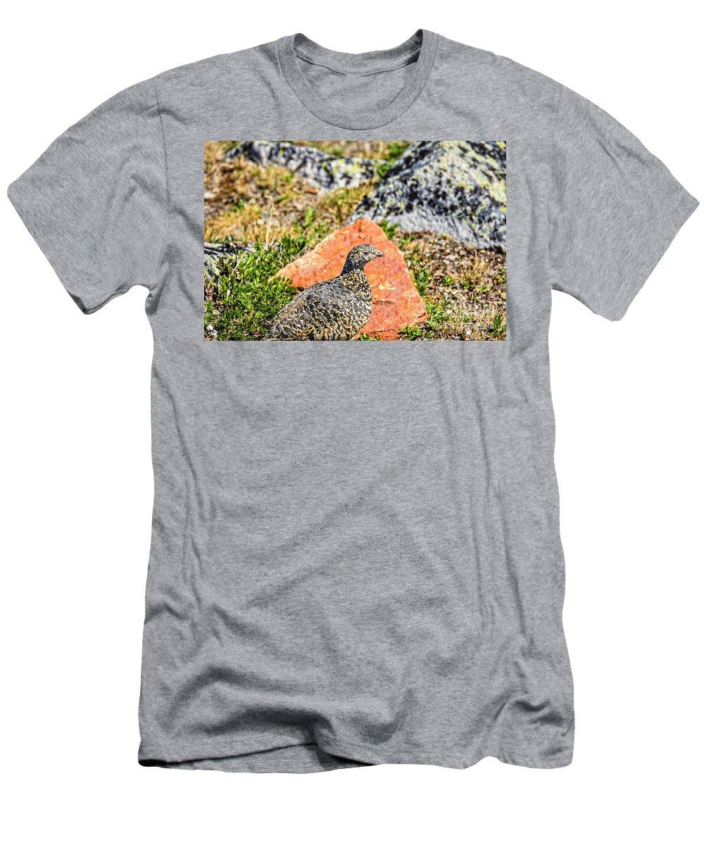 Partridge Men's T-Shirt (Athletic Fit) featuring the photograph Partridge 2 by Viktor Birkus