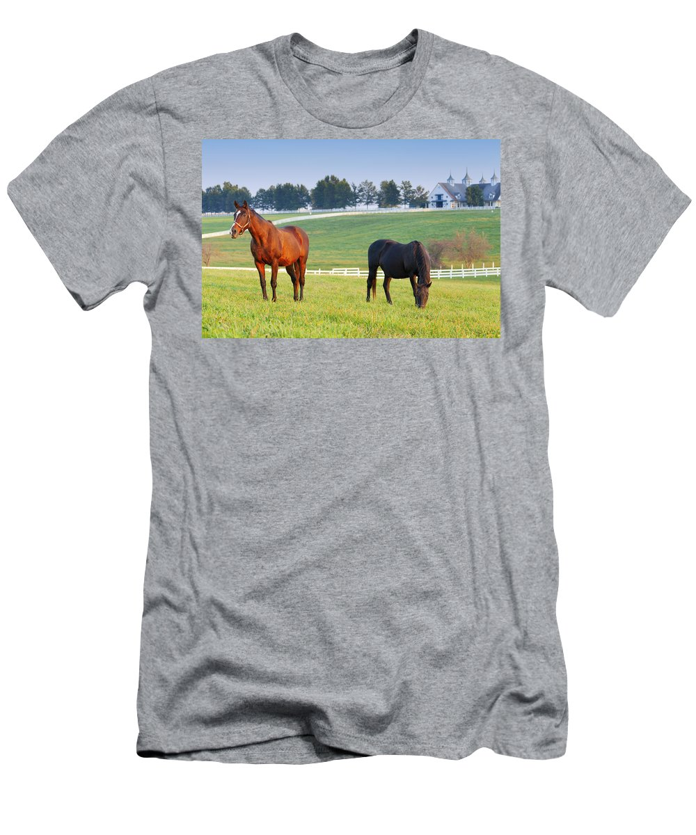 Farm Men's T-Shirt (Athletic Fit) featuring the photograph Pasture by Alexey Stiop