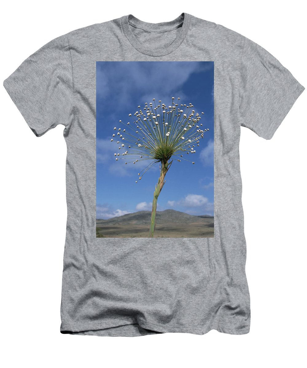 Feb0514 Men's T-Shirt (Athletic Fit) featuring the photograph Pipewort Grassland Plants Blooming by Tui De Roy