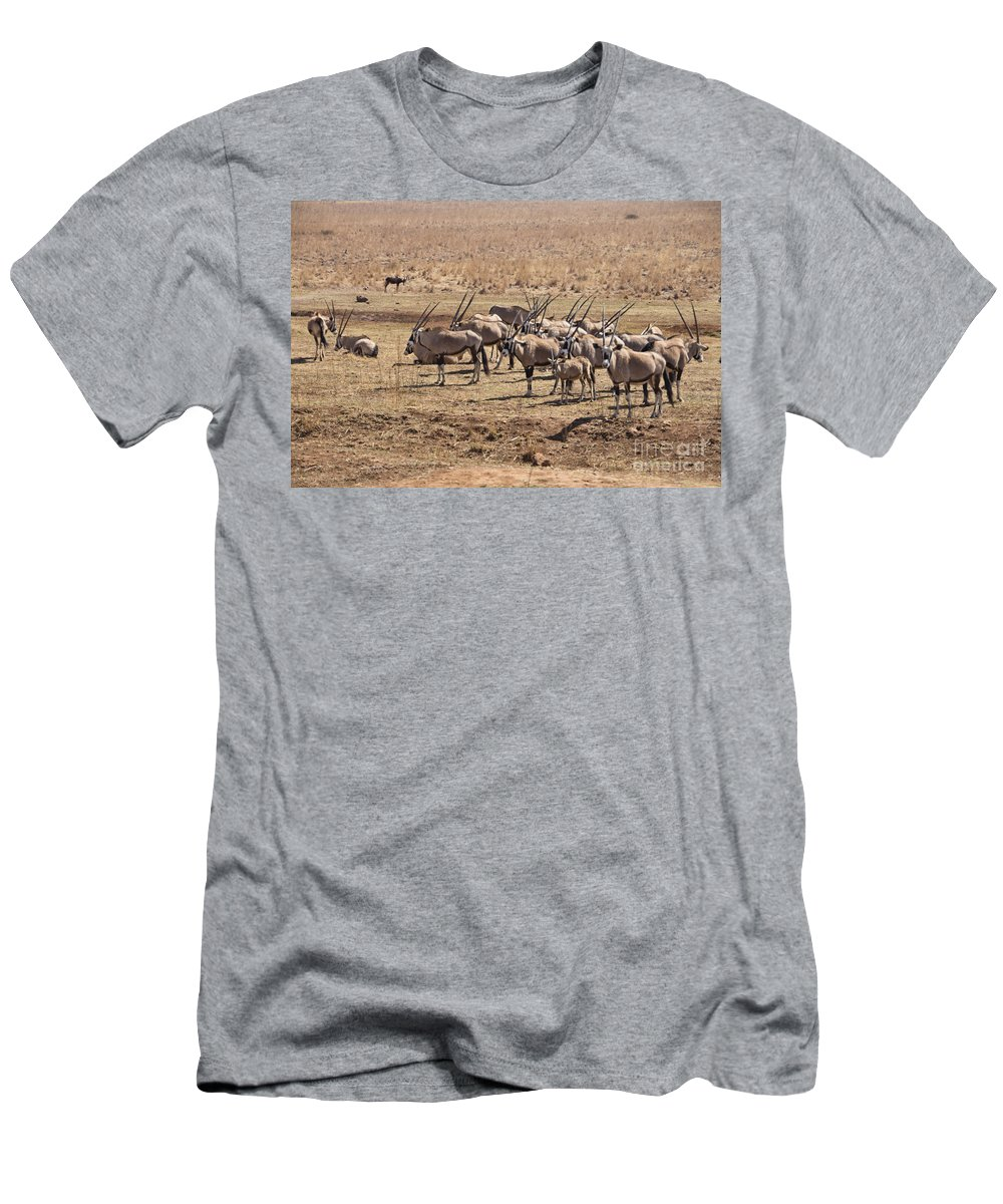 Oryx Men's T-Shirt (Athletic Fit) featuring the photograph Safety In Numbers by Douglas Barnard