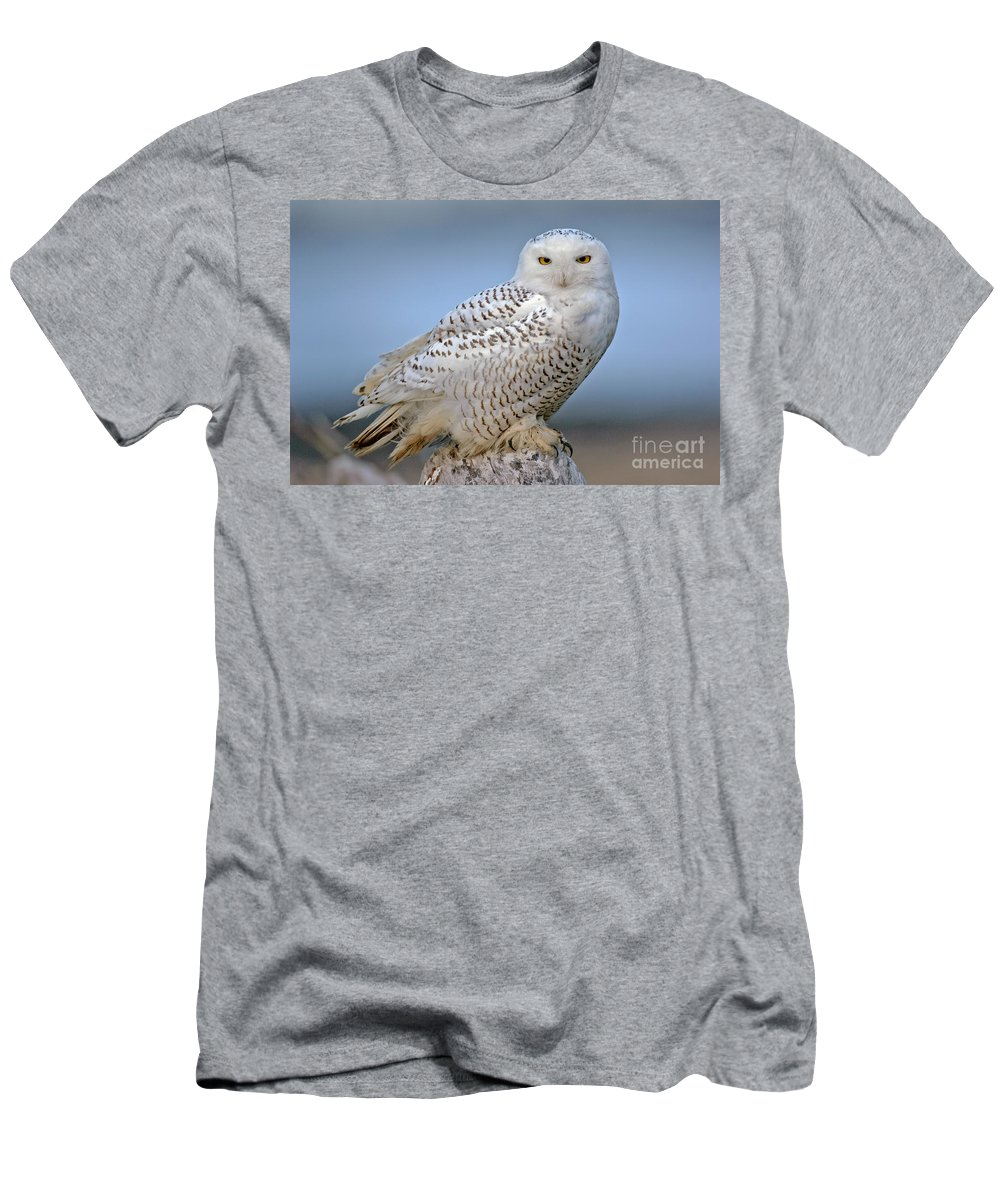 Bird Men's T-Shirt (Athletic Fit) featuring the photograph Snowy Owl by Anthony Mercieca