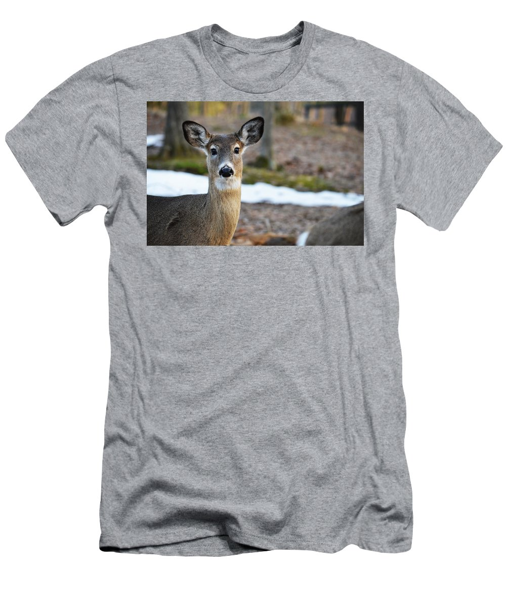 Whitetail Men's T-Shirt (Athletic Fit) featuring the photograph Standing Proud by Linda Kerkau