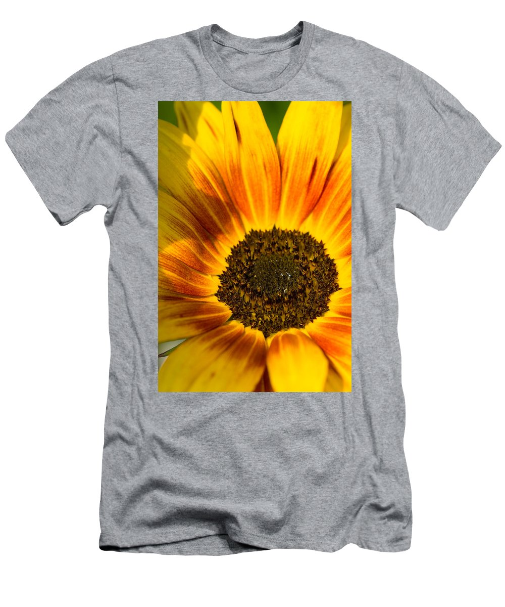 Sommer Men's T-Shirt (Athletic Fit) featuring the pyrography Sunflower by Steffen Gierok