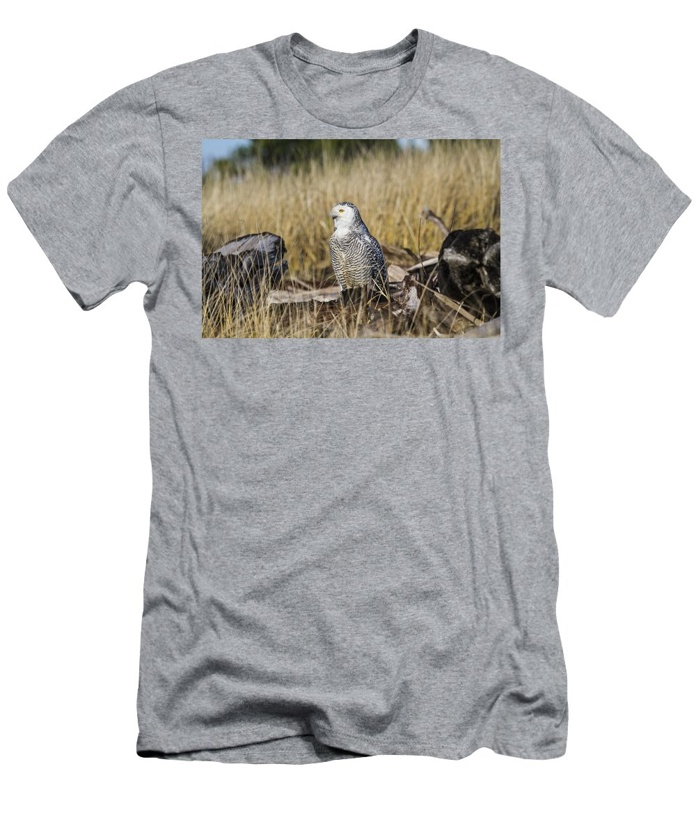 Doug Lloyd Men's T-Shirt (Athletic Fit) featuring the photograph The Watcher by Doug Lloyd