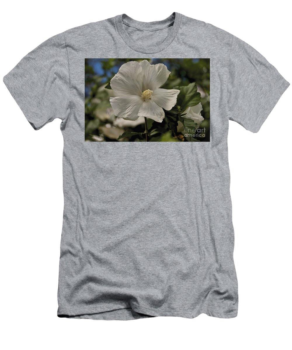 Tree Men's T-Shirt (Athletic Fit) featuring the photograph White by William Norton