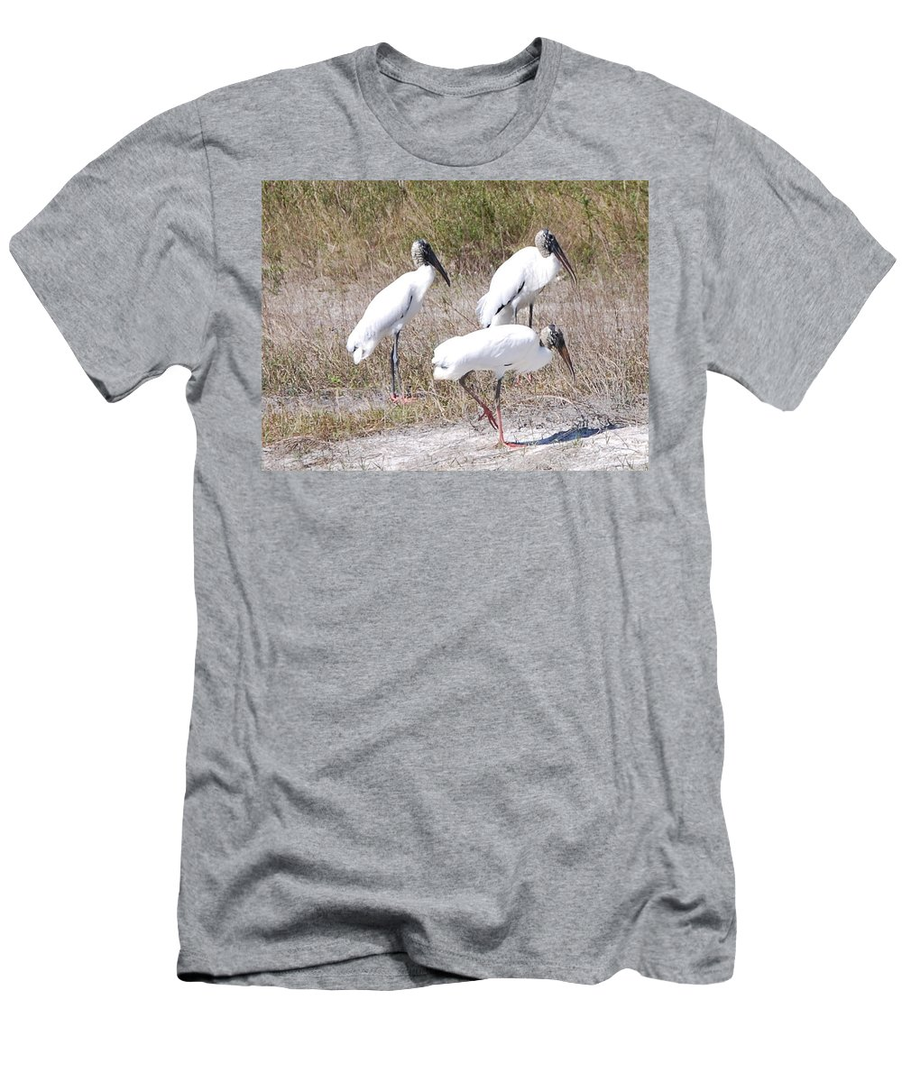 Feeding Together Men's T-Shirt (Athletic Fit) featuring the photograph Wood Storks by Robert Floyd