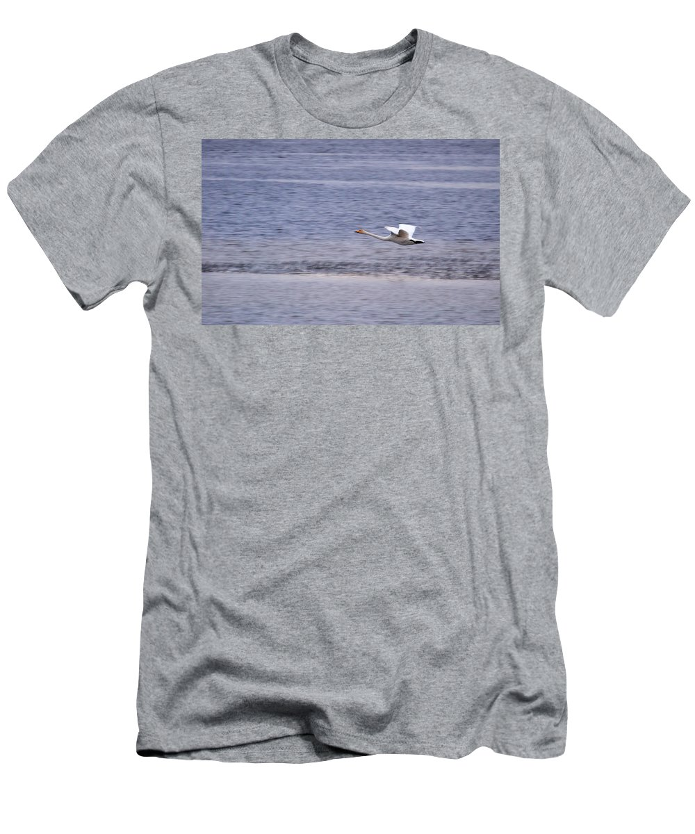 Lehto Men's T-Shirt (Athletic Fit) featuring the photograph Whooper Swan by Jouko Lehto
