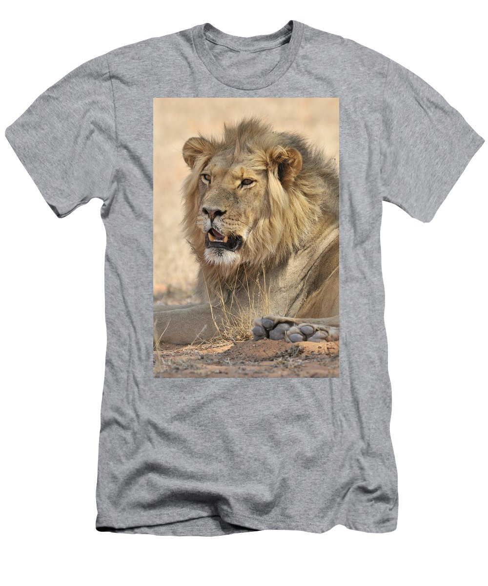 African Men's T-Shirt (Athletic Fit) featuring the photograph 120118p040 by Arterra Picture Library