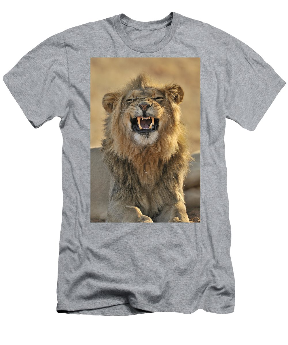 African Men's T-Shirt (Athletic Fit) featuring the photograph 120118p047 by Arterra Picture Library