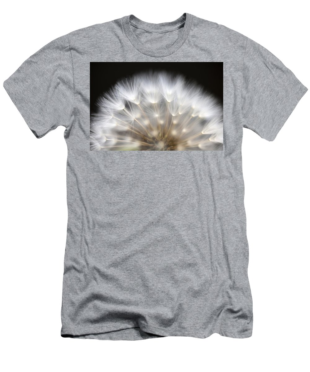 Dandelion Men's T-Shirt (Athletic Fit) featuring the photograph Dandelion Backlit Close Up by Jim Corwin