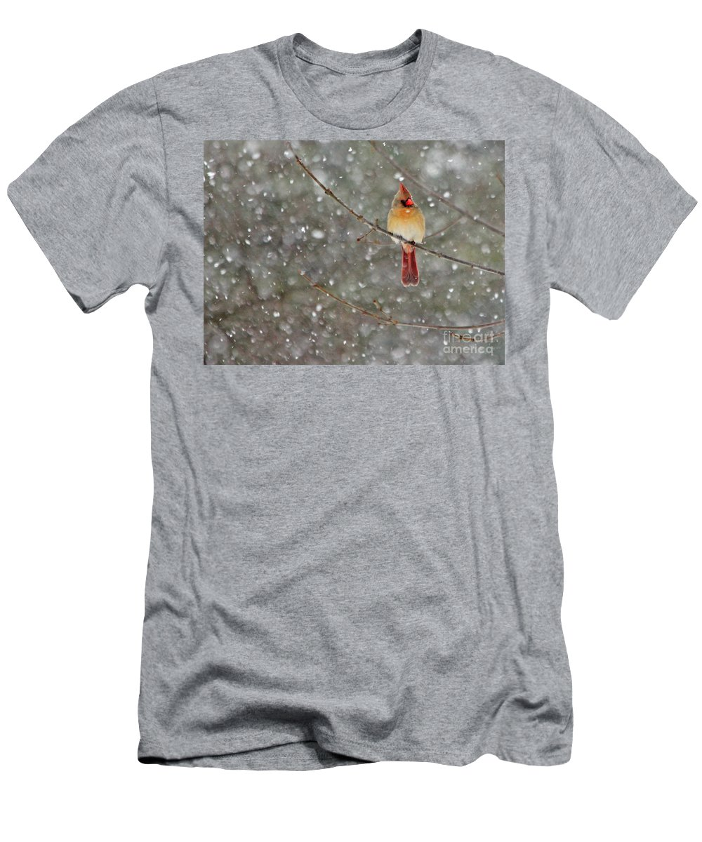 Female Cardinal Men's T-Shirt (Athletic Fit) featuring the photograph Female Cardinal In Snow by Jack Schultz