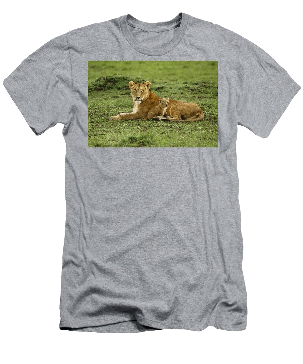Lion T-Shirt featuring the photograph Mama's Little Baby by Michele Burgess