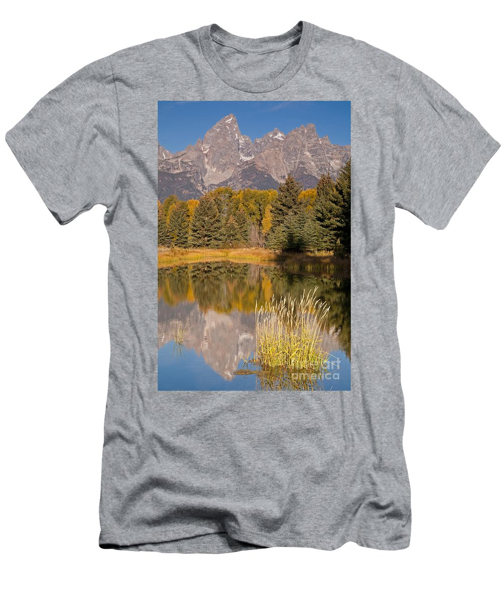 Grand Teton Np Men's T-Shirt (Athletic Fit) featuring the photograph The Grand Tetons Schwabacher Landing Grand Teton National Park by Fred Stearns