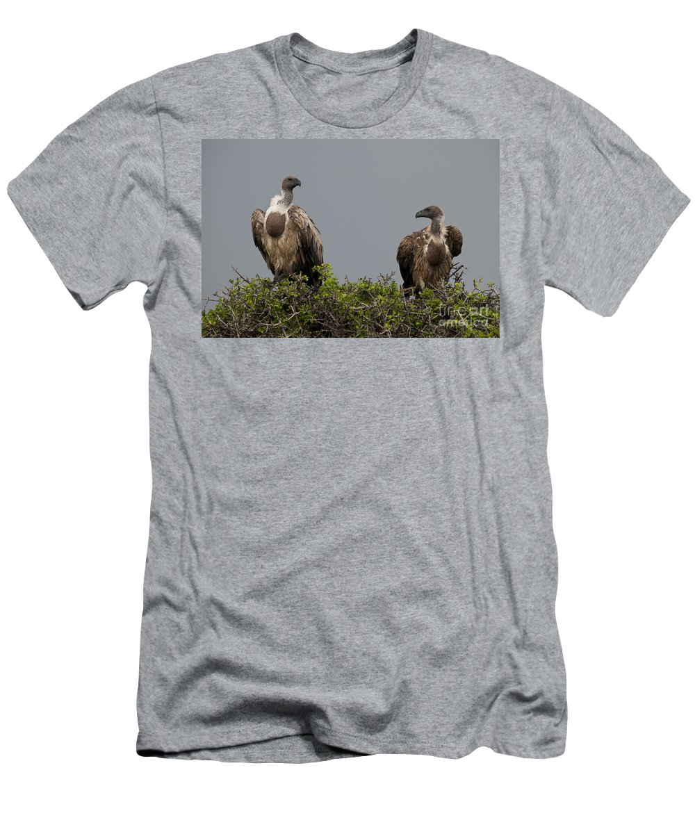 African Fauna Men's T-Shirt (Athletic Fit) featuring the photograph Vultures With Full Crops by John Shaw