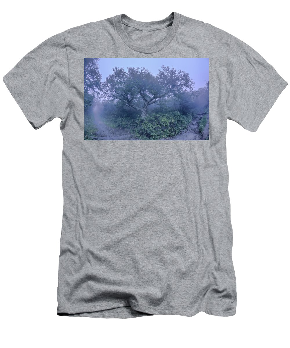 America Men's T-Shirt (Athletic Fit) featuring the photograph Craggy Gardens North Carolina Blue Ridge Parkway Autumn Nc Sceni by Alex Grichenko