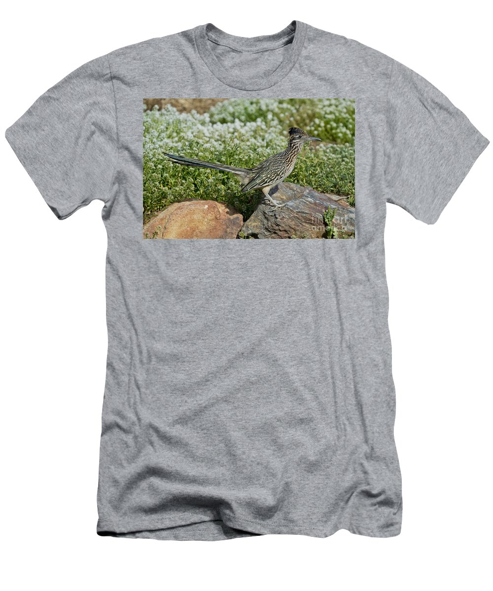 Greater Roadrunner Men's T-Shirt (Athletic Fit) featuring the photograph Greater Roadrunner by Anthony Mercieca
