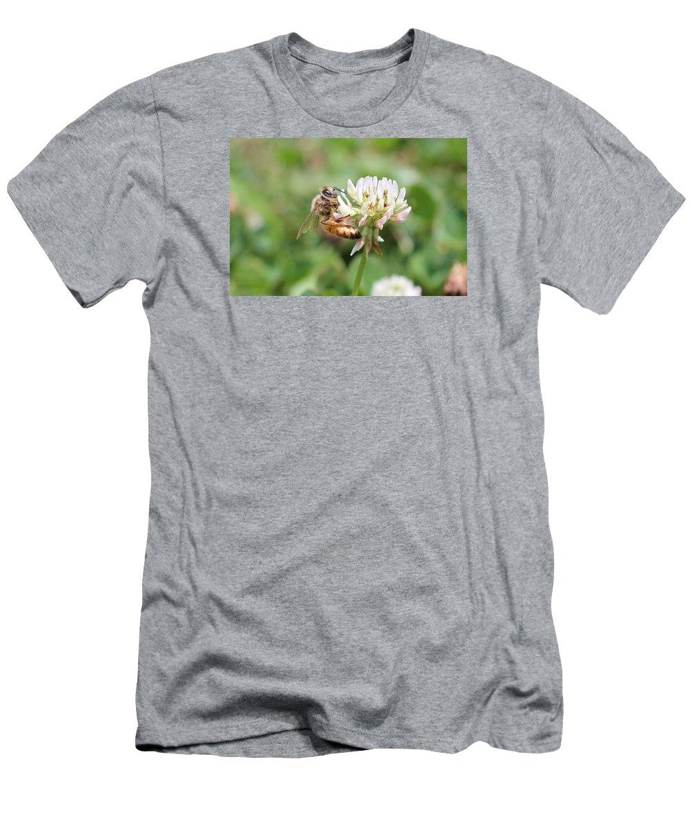 Honeybee Men's T-Shirt (Athletic Fit) featuring the photograph Honeybee On Clover by Lucinda VanVleck